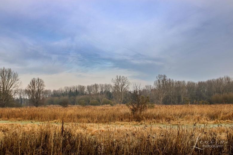 Throwback to December - Een kleine terugblik naar een prachtige winterdag eind december 2019. <br /> <br /> Het was een prachtige dag om te fotograf