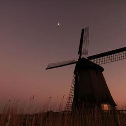 In de polder.....