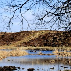 Zwanenwater-Callantsoog