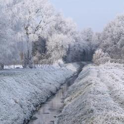 Winterwonderland I