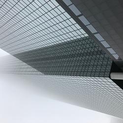 Skyscraper in the mist