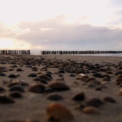 schelpjes op het strand