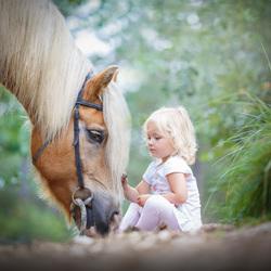 Big horse, little girl