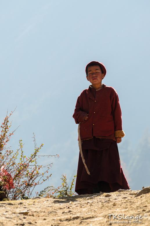Ribung Monk