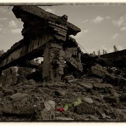 Auschwitz-Birkenau (3)
