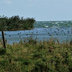 windkracht 5