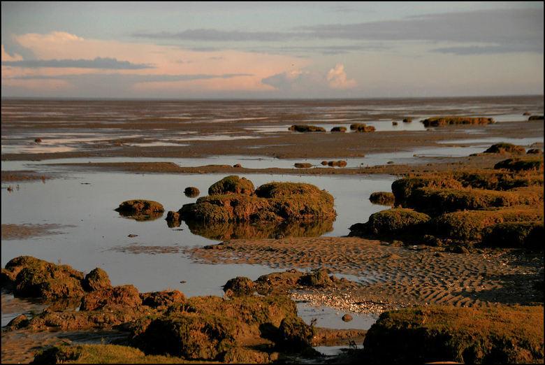 Kwelder landschap - Kwelderlandschap aan de waddenkust vlak bij de Eemshaven afgelopen maandag