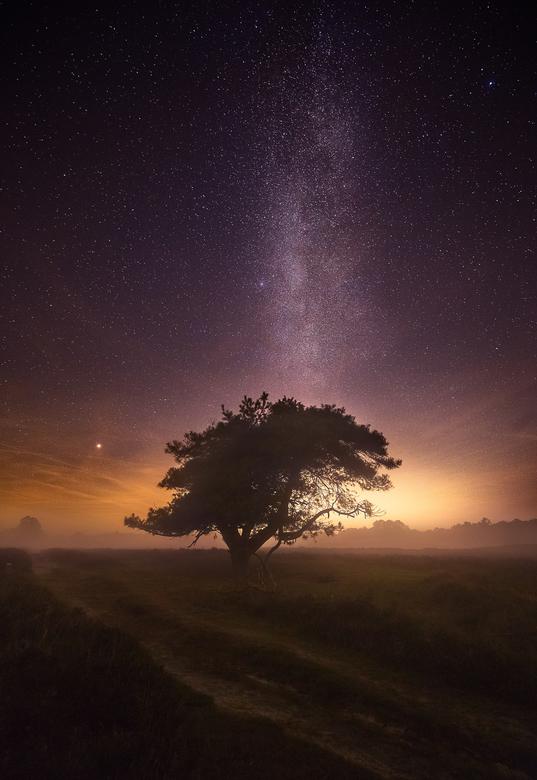 Magical Night onder de sterren (Melkweg) - Afgelopen vrijdag voor de eerste keer op pad geweest om de sterren tefotograferen in het mooie Drente wat w