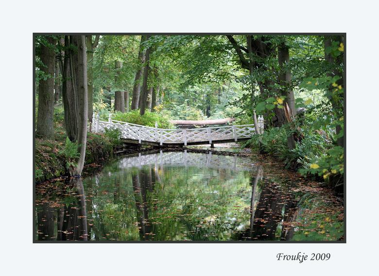 veenkloosterbos - Een herfstplaatje . <br /> Bedankt voor alle reacties op mijn vorige foto.<br /> Groetjes Froukje