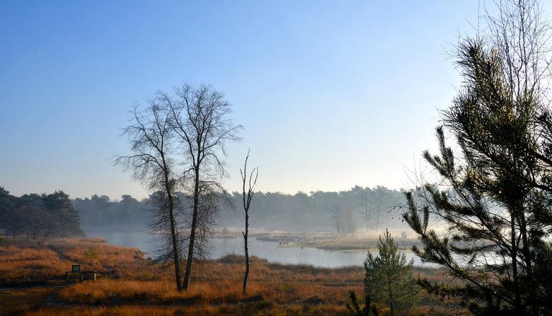 Ravenvennen. - Natuurgebied de Ravenvennen even ten noorden van Venlo is een onderdeel van nationaal park de Maasduinen.