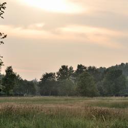 Landschap met beperkt zicht