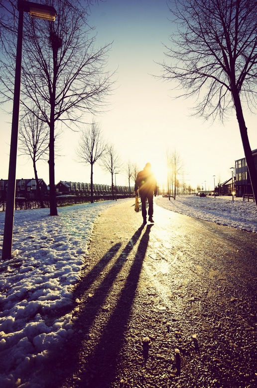 Ice cold day - gemaakt op een vroege ochtend in Wijchen