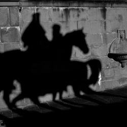 Paarden of toch niet