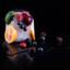Fruit in ijs