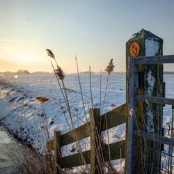 Winterlandschap tijdens zonsopkomst