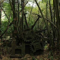 Wat je wel niet tegenkomt in het bos