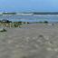 Ameland kustlijn 2 (1 van 1)