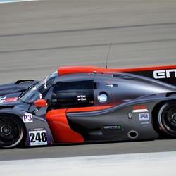 Ligier JS P3 Peter Kox