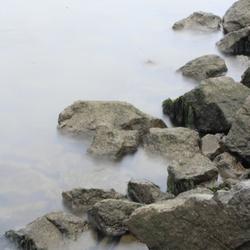 rotsen+water
