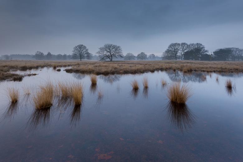 Strabrechtse Heide 310 - Geen mysterieuze mist of prachtige, door de opkomende zon gekleurde, wolken dit keer. Nee, helaas is het niet altijd feest du