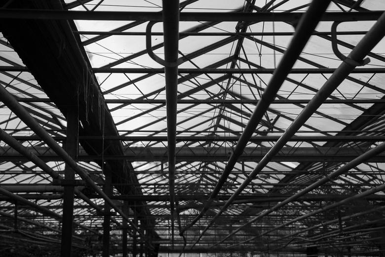 Urban 2 - deze foto is gemaakt in een verlaten en verwaarloosde tuinbouwkas. Het had de hele dag geregend en er kwam net een waterig zonnetje door de