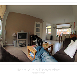 Room With A Fisheye View