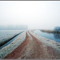 Mist landschap