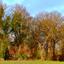 DSC_0630   achter de bomen.