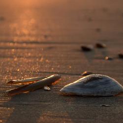 Gouden zonsopkomst