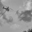 Helikopter-schelpengruis