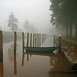 Lijnen spel in de mist 2