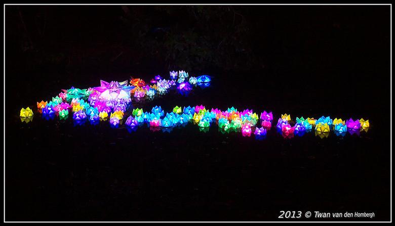 Glow 2013 Waterlelie's - Verlichte waterlelie's