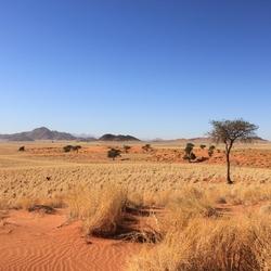 Uitzicht in Namibië