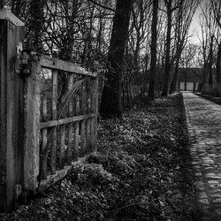 Het hek en de kinderkopjes