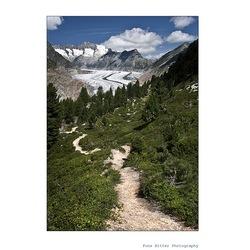 Aletsch Gletscher Gebied