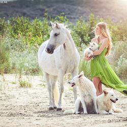 Beautiful herd