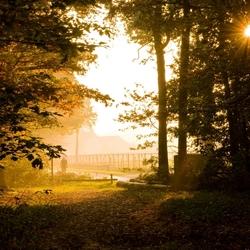 Zonsondergang in het Mastbos