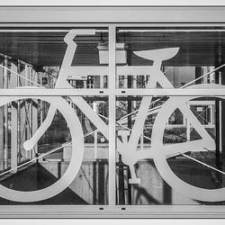 Campus-Nijmegen-fietsenstalling