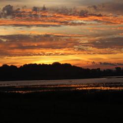 zonsopkomst tongplaat