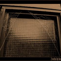 2 webs