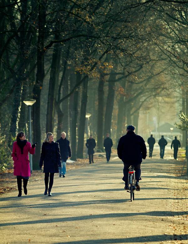 Those streets - @@ momenten van de straat @@