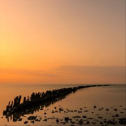 Friesland 07