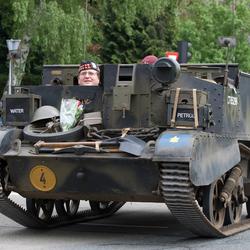 Tank mannetje