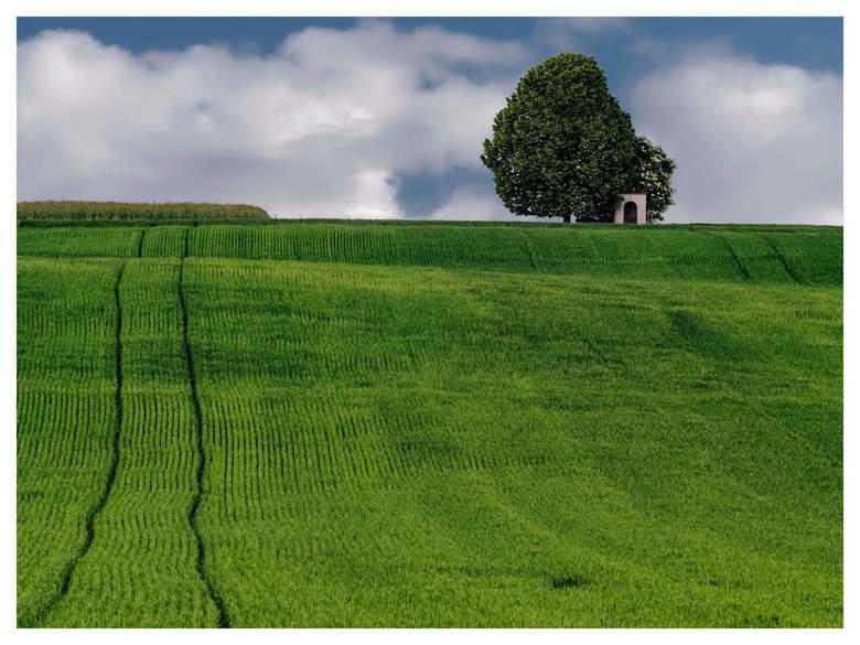 Een eenzame boom - Een eenzame boom en kapelletje in het Oostenrijkse landschap.