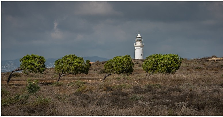 Four trees and a lighthouse - Paphos, Cyprus