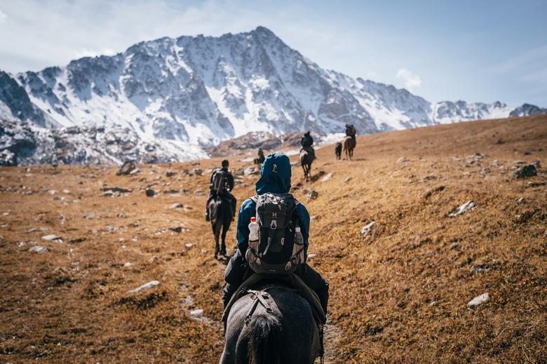 Horse trekking.