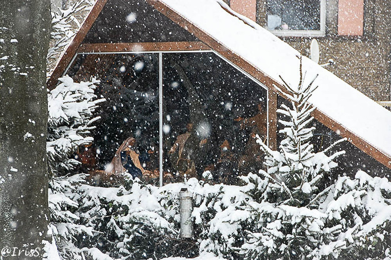 kerstwens - Ik wens alle ZOOMER&#039;S een fijne kersttijd. <br />  Dit kribje straalde in 2009 in de sneeuw. Zij wordt jaarlijks opgebouwd en onderh