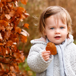 herfstportret in de lente
