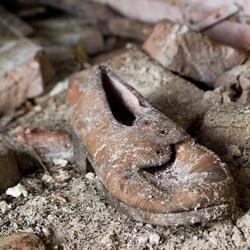 Urban shoe