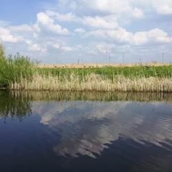Wolkenspiegel (2)